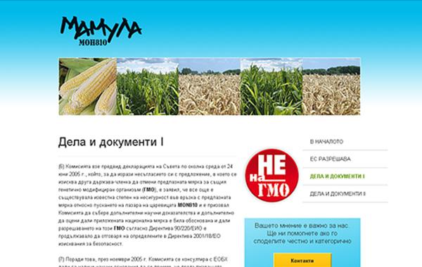 уеб дизайн - сайт mamula, 06